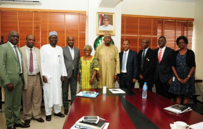 Council Call for Speedy Adoption of IPv6 in Nigeria