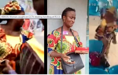 Watch: Woman Caught on CCTV Stealing Handbag at RCCG