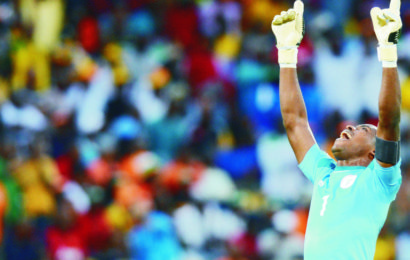 Gernot Rohr Confirms Vicent Enyeama's Return to Super Eagles