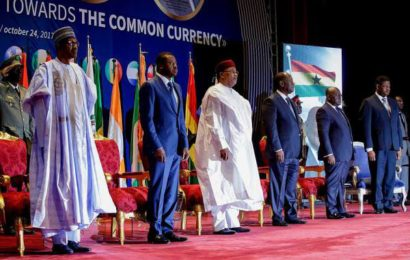 Common Currency: 'Be Cautious', Buhari Tells ECOWAS in Niger