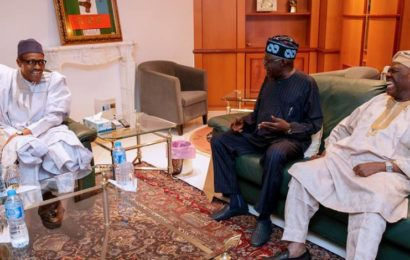 My Visit to Buhari Unconnected with Obasanjo's Letter, says Tinubu